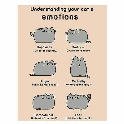pusheen cards all variations happy birthday, get well, friends, burrito, cool