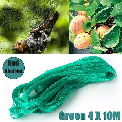 4x10m GREEN Anti Bird Netting , Plant Net / Fruit Tree Bird Netting Brand New SP