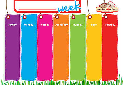 Fully Magnetic Weekly Planner & Erasable Magnetic Pen