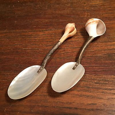 Vintage Spoons Antique Caviar Spoon Lot (2) Shell PRIORITY MAIL