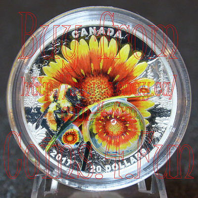 2017 Mother Nature's Magnification #3 Beauty under the Sun $20 Pure Silver Coin