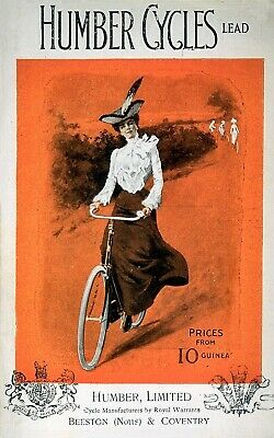 Vintage French Alcyon Cycles Bicycle Travel Advertisement Poster Art Print A3 A4