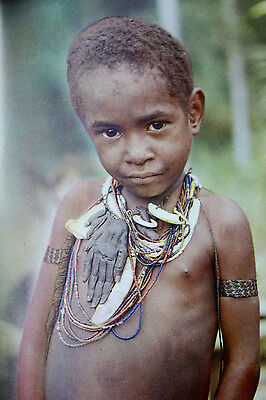 German Book With Highly Interesting Photos For The New Guinea Enthusiast