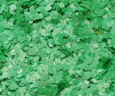 Mica Flakes - Green - Natural Mica  - The Professionals Choice - 311-4357