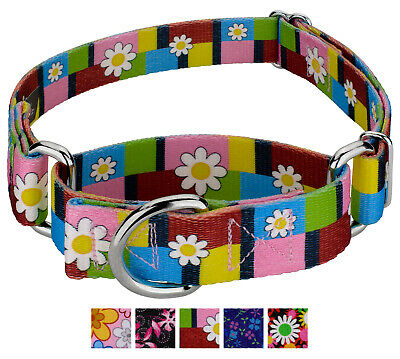 Country Brook Petz® Martingale Dog Collar - Floral Collection