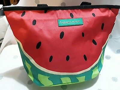 Tupperware carry lunch bag