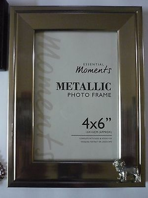 Standing Pug TG5 Fine English Pewter On A PICTURE FRAME SILVER 6X4 Hang/Stand