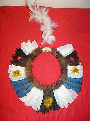 Beautiful Pareci  Brazil Amazon Indian Headdress