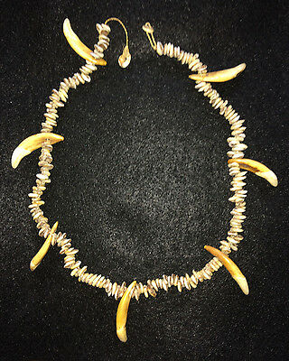 Vintage Papua New Guinea Dog Tooth & Shell Necklace