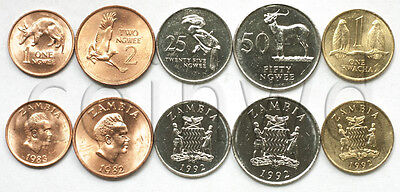 Zambia 5 Coins Set 1982-1992 Animals Unc (#1487)
