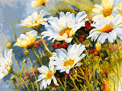 Framed Painting by Number kit Daisies Spring Flowers Floral Plant DIY MB7073