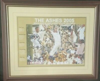 The ashes 2005 cricket