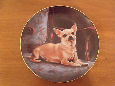 Danbury Mint Chihuahua Puppy Dog The Perfect Spot Limited Edition Plate Early #