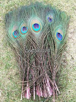 New 10 pcs beautiful peacock feathers eyes 10-12 inch/25-30 cm pink decoration
