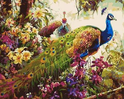Paint By Number Kit Beautiful Peacocks DIY Painting PZ7052
