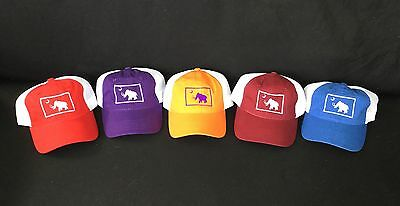 Widespread Panic Grateful Dead Phish Big Wooly Mammoth Red Hat Free Ship!!