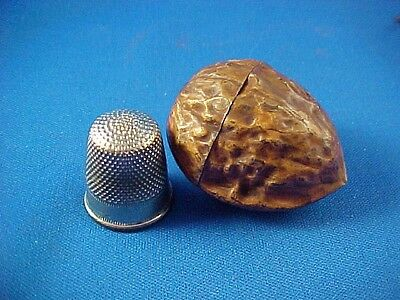 Antique Victorian Painted Tin Walnut Thimble Case, Realistic