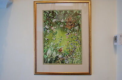 Watercolour Painting Large Birds Chicks Nest Butterfly Bee Saddleworth Artist