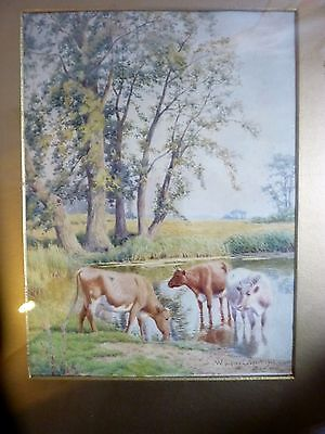 Watercolour Cattle Watering By William Sidney Cooper  Signed & Dated 1913