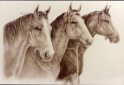Limited Edition HORSE ART PRINT THOROUGHBRED SENTRIES S/N by Artist