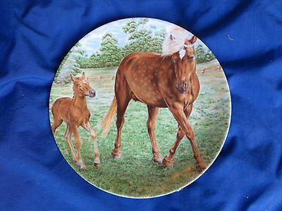 Kaiser Collectors Plate Of A Mother Horse And Her Foal From West Germany