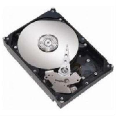 300Gb 2.5In Sff 10K 6Gbps Hs Sas Hdd