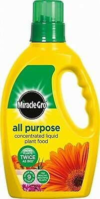 Miracle-Gro All Purpose Concentrated Grow Liquid Feed Plant Food Bottle 1L NEW