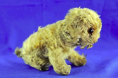 Antique Steiff Mohair Molly Shaggy Dog Glass Eyes Jointed Head No Button