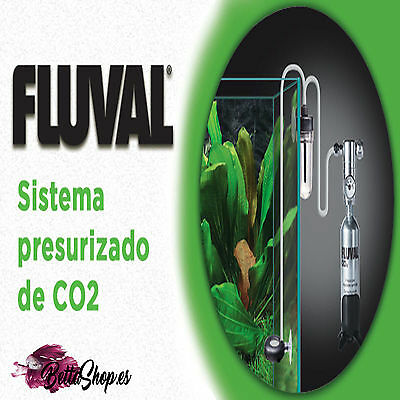 Recambios De Co2 Botellas De Co2 Botella Co2 Recambio Co2 Co2 Para Plantas Peces