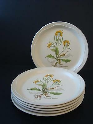 Poole  Country Lane 6 X Dinner Plates