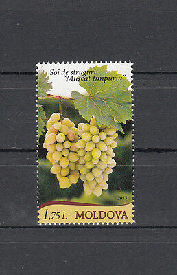 Moldova Moldawien 2013  MNH** Mi. 849 Grapes of Moldova