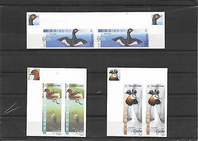Rare Namibia Stamps - 2011 Grebes Set of 3 imperf pairs u/m