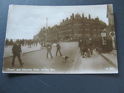 Antique 1900's postcard - Prom and Waverly Hotel, Whitley Bay