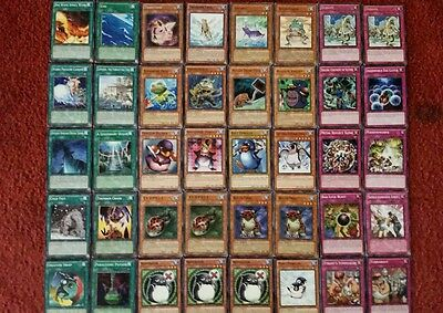 Yu-Gi-Oh Frog and Penguin Deck - 40 cards complete BONUS 5 cards