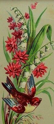 Victorian Reward Of Merit Bookmark Colorful Bird Lily-Of-The-Valley F75