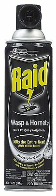 Raid Wasp & Hornet Killer Defense System Spray, 14-Ounce