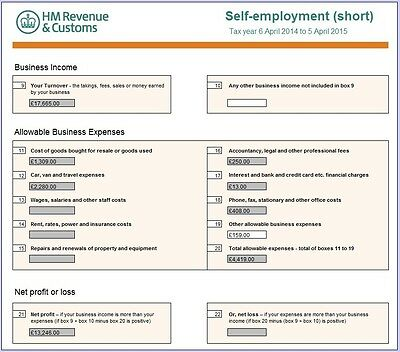 Small Business Accounts & Tax Spreadsheet (Bookkeeping, Accounting, Excel)