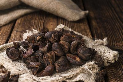 AFRICAN Kola Nut 2 oz MOJO Wicca Witch Spell Pagan Happiness Energy Herb