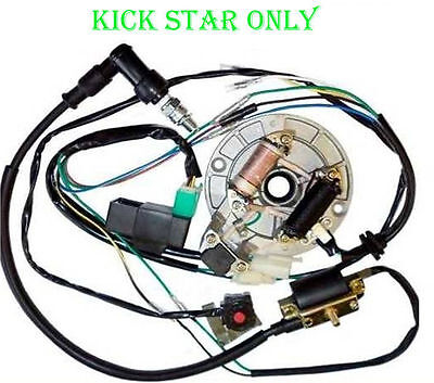 Complete Electrics Wiring Loom Harness For 50cc 70cc 110cc 125cc 140cc Dirt Bike