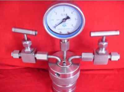 Hydrothermal synthesis Autoclave Reactor vessel +inlet outlet gauge 25ml 6Mpa e
