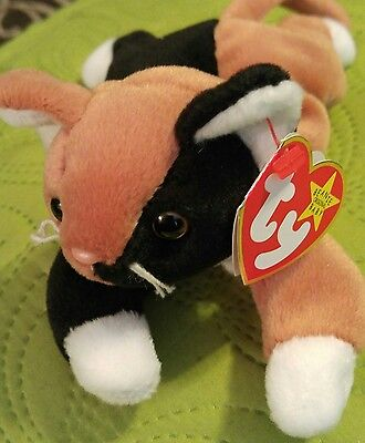 Ty beanie baby Chip with multiple ERRORS
