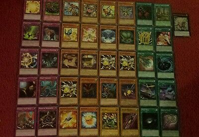 Yu-Gi-Oh Flying Insect Deck - 40 cards complete BONUS 5 cards