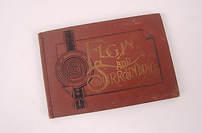 Elgin Illinois and Surrounding - Vintage 1891 Local History Book TONS of photos!