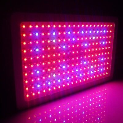 300 Watt LED Full Spectrum Plant Herb Grow Light + DHL Express + 2 Year Warranty