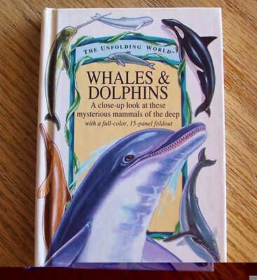Unfolding World Whales & Dolphins Small Marine Life Art Book 1994 Running Press
