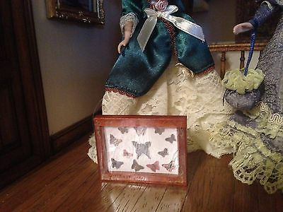 DOLLS HOUSE 1/12TH SCALE Lovley butterfly collection in case
