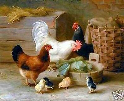 "Art Repro oil painting:""The rooster and chicken at canvas"" 20x24 Inch"