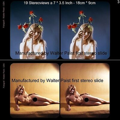 18 Stereofotos Aktfotos Nude Pin Up by Walter Paist USA, Lot 3 Stereoviews