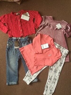 Next Baby Girls Brand New With Tags Clothes Bundle Age 12-18 Months