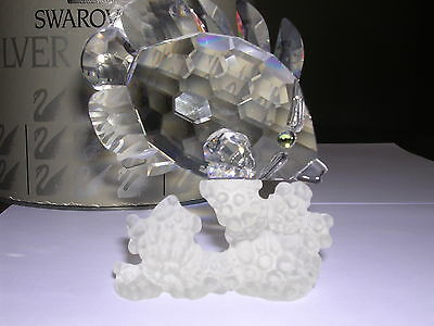 "Swarovski Silver Crystal "" FISH BUTTERFLY  "" Mint in Original box 301336 M"